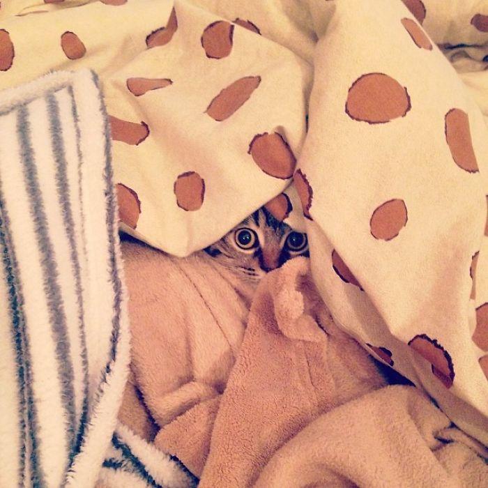 Brrrr… I'm Cold!