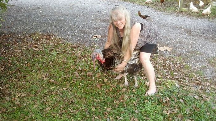 My Grey Hair Before Cancer With Tom My Yard Guard Bird…..