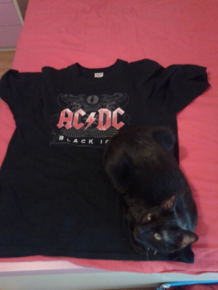 Black Metal Cat!
