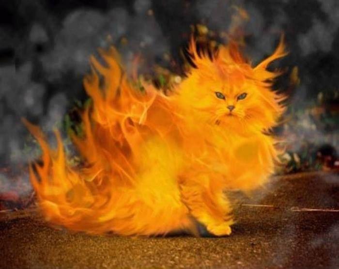 Flaming Madd