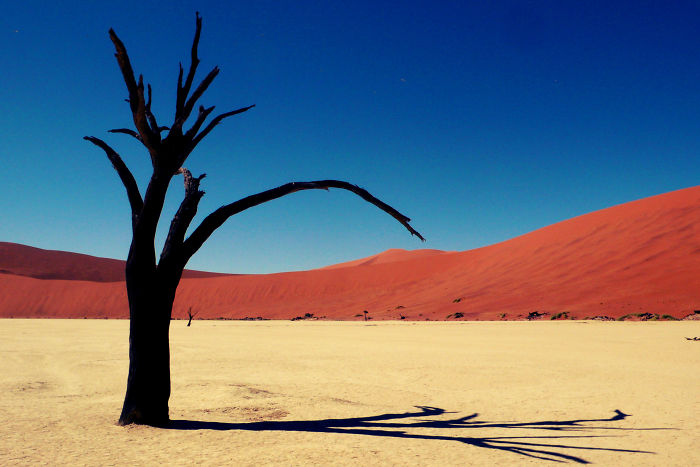 The Most Beautiful Desert Landscapes Of The World