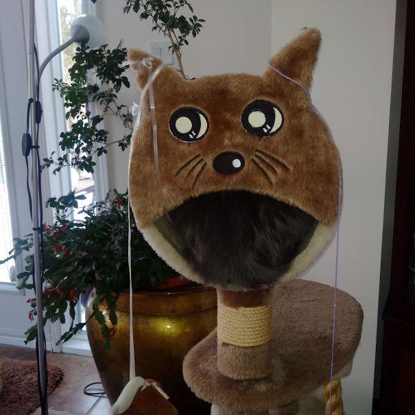 Cat Eating Cat?