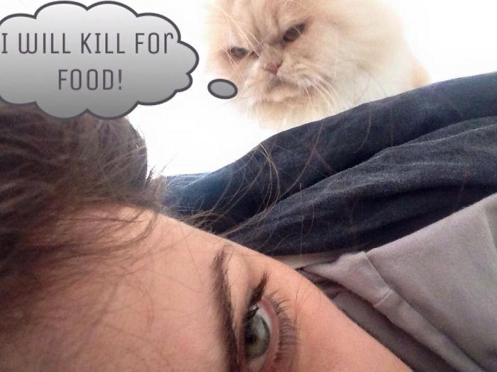 I Will Kill For Food.