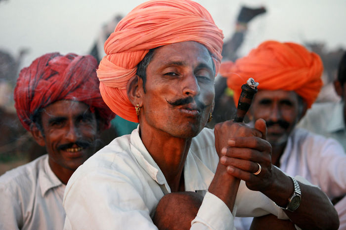 The Dashing Camel Herders Of Rajasthan