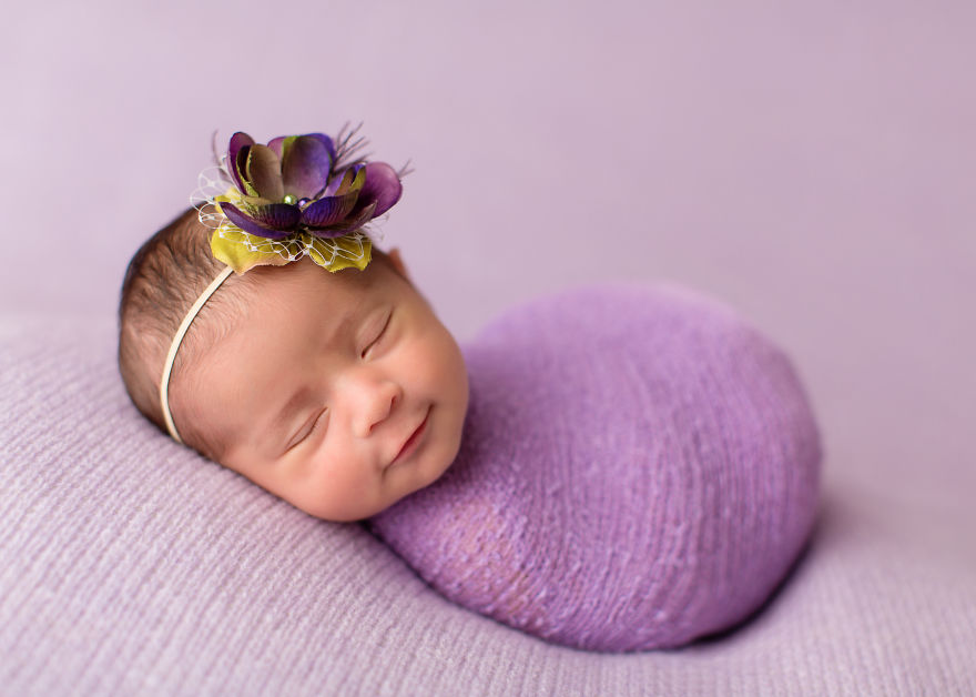 download The Flower Class Corvette Agassiz (Anatomy