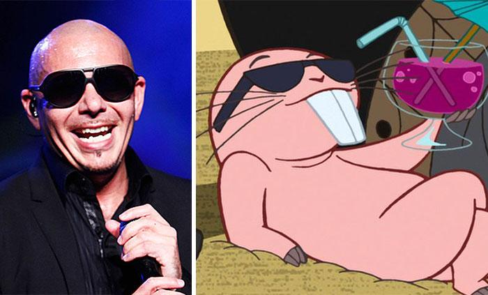 Pitbull Looks Like Rufus