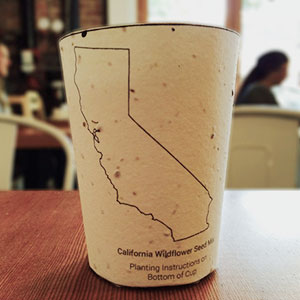 Biodegradable Coffee Cups Embedded With Seeds Grow Into Trees When Thrown Away