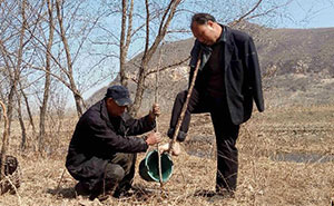 Blind Man And His Armless Friend Spend 10 Years Planting 10,000 Trees In China