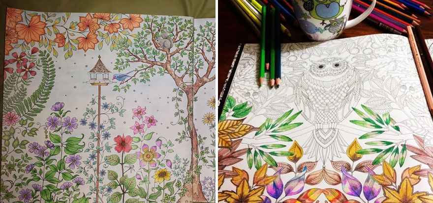ideias jardim secreto:Johanna Adult Coloring Book