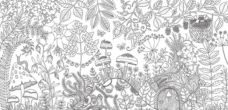 Artist Creates Adult Coloring Books And Sells More Than A Million