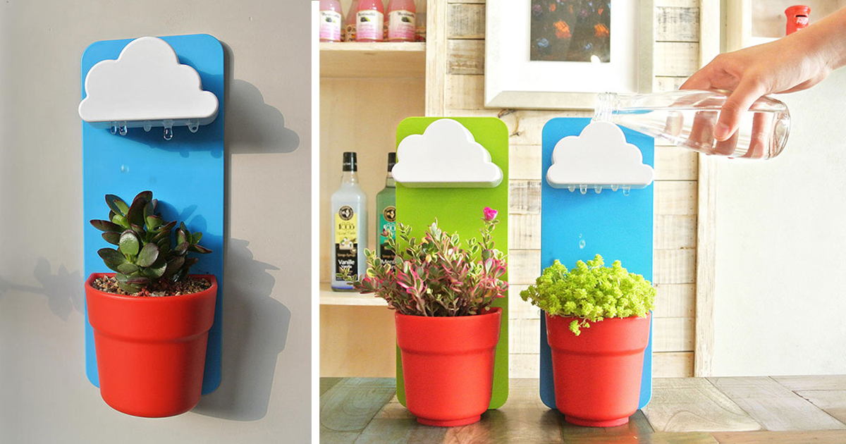 Rainy Pot: Now Your Flowers Can Have Their Very Own Rain Clouds