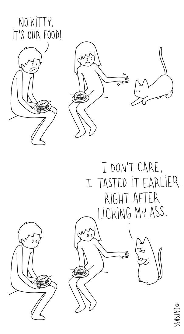 funny-cat-comic-strip-catsass-claude-combacau-21