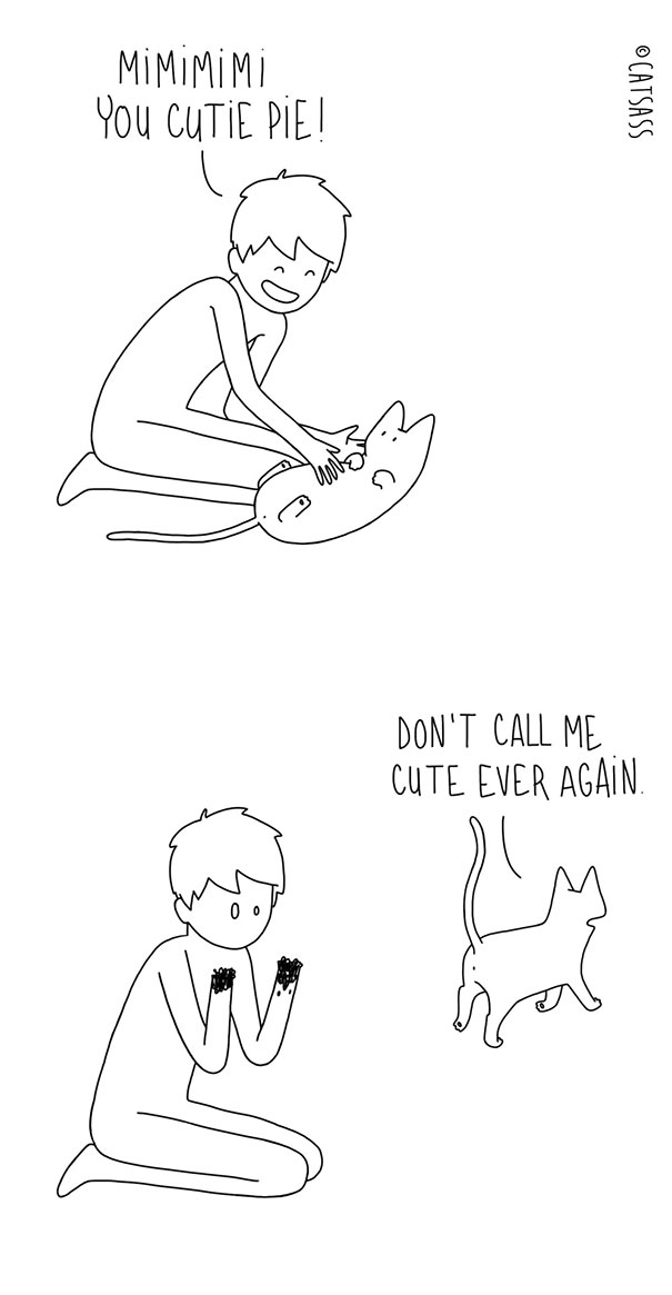 funny-cat-comic-strip-catsass-claude-combacau-23