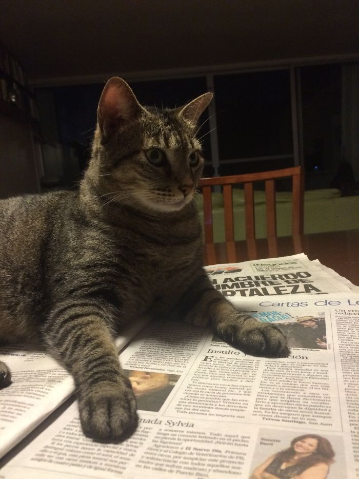 Letters From The Readers?!? No! You're Done With Today's Paper!