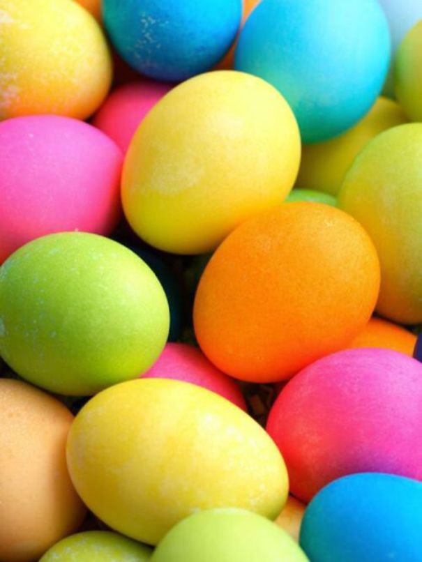 Usa Eggs