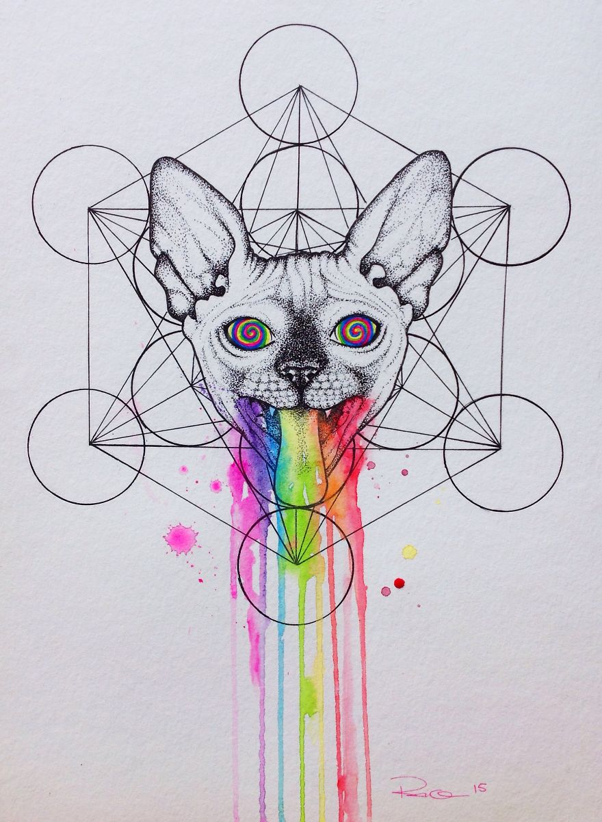 I Draw Sphynx Portraits For Everyone Who Ask Bored Panda