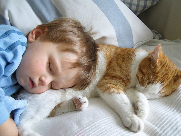 Baby Sleeping With A Cat
