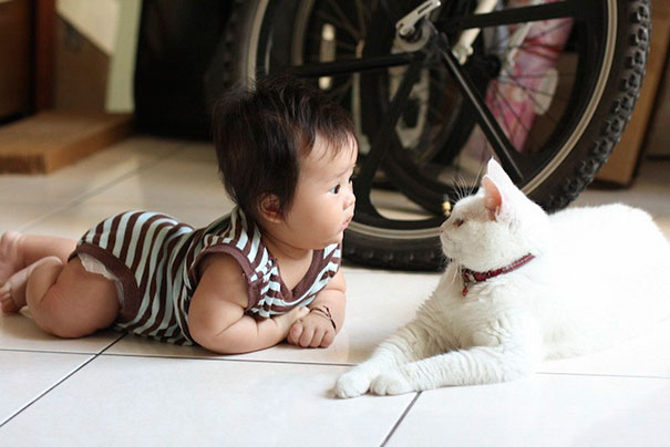 Cute Baby And A Cat