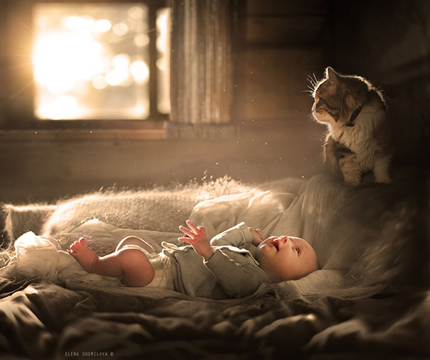 Baby With A Cat