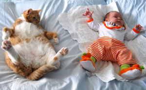 20+ Adorable Photos Proving That Your Kids Need A Cat