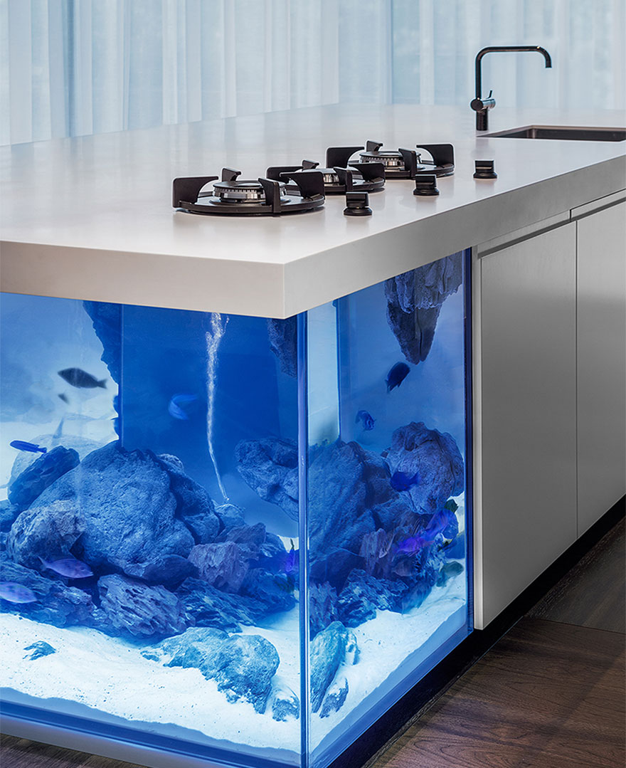 This kitchen island is also a giant aquarium bored panda for Islas para cocinas integrales