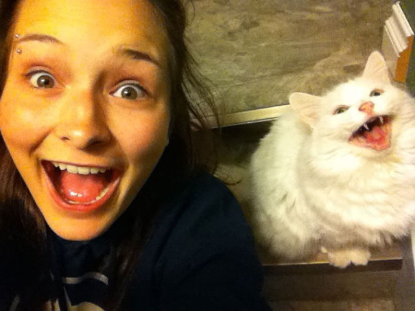 My Friend Took This Picture With Her Cat On A Total Fluke