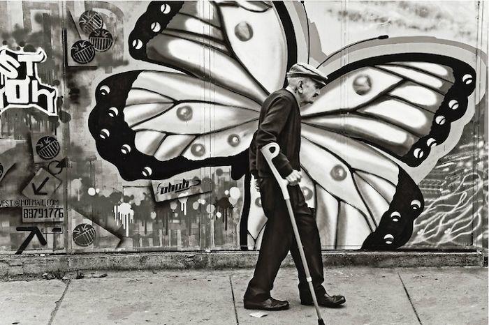 Metamorphosis By David Taggart