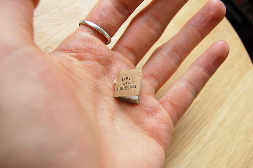 miniature-book-lifes-lil-pleasures-evan-lorenzen-10