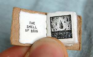 Life's Lil Pleasures: A New Miniature Book By Evan Lorenzen
