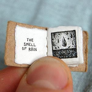 Life's Lil Pleasures: A New Miniature Book By Evan Lorenzen