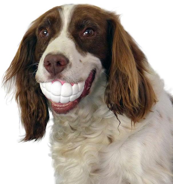 Funny Teeth-shaped Ball
