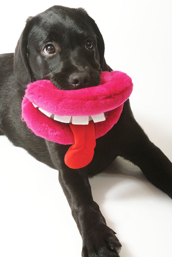 Ancol Plush Dog Lips Dog Toy