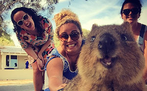 Quokka Selfie Is Cutest Trend In Australia Right Now