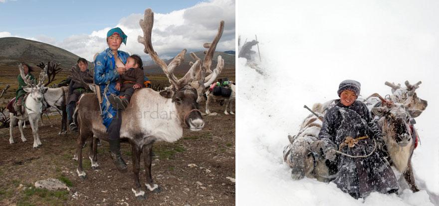 reindeer-people-hamid-sardar-afkhami-10