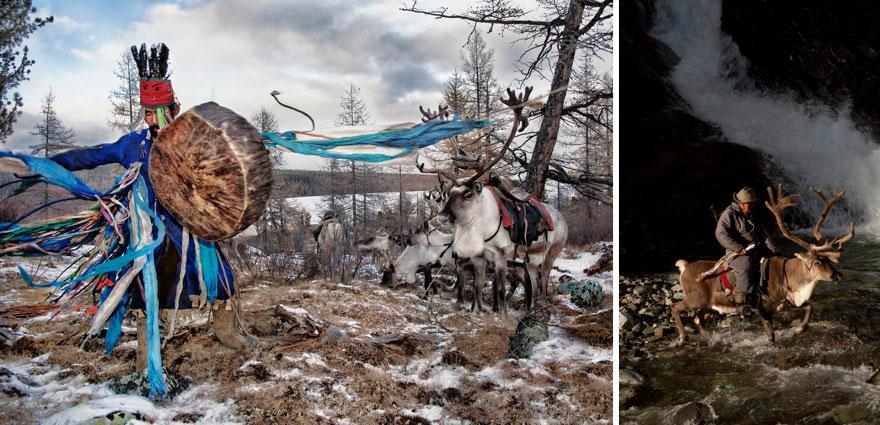 reindeer-people-hamid-sardar-afkhami-67