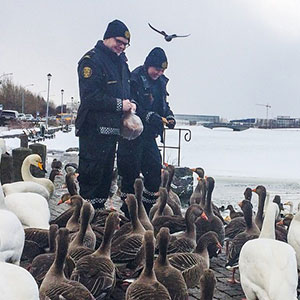 UPDATE: Reykjavik Police Instagram Continues To Be Awesome