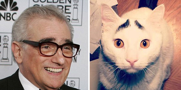 Martin Scorsese And This Cat