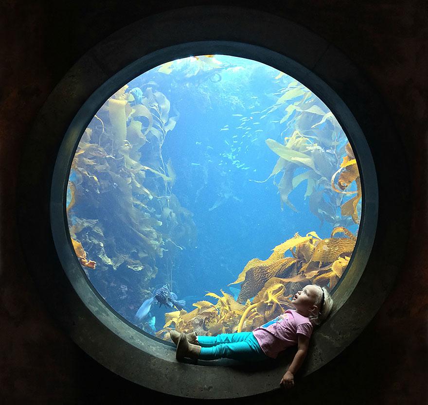 A Girl Stares In Wonder At An Aquarium Tank, Monterey Bay Aquarium, Monterey, California