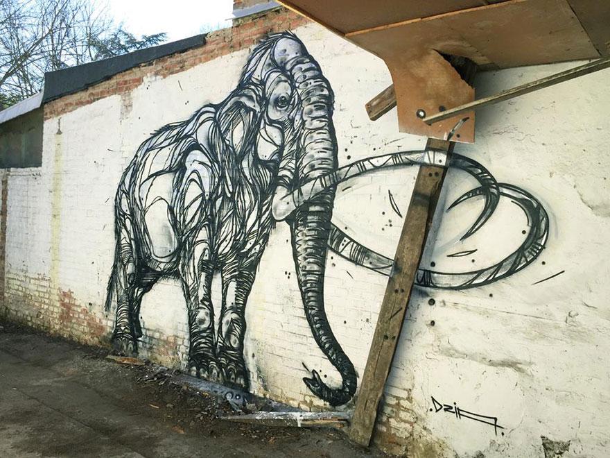 street-art-geometric-line-animals-dzia-belgium-13