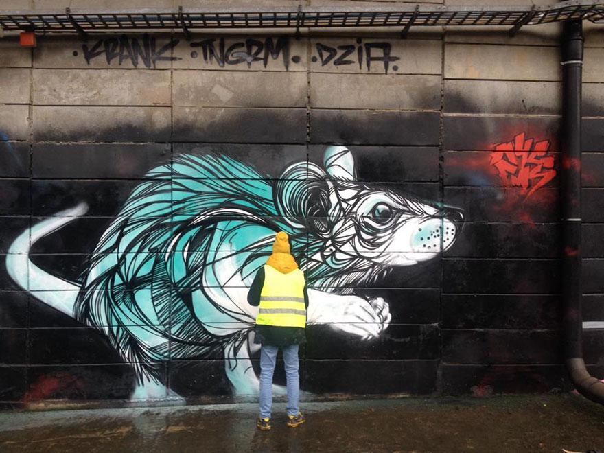 street-art-geometric-line-animals-dzia-belgium-14