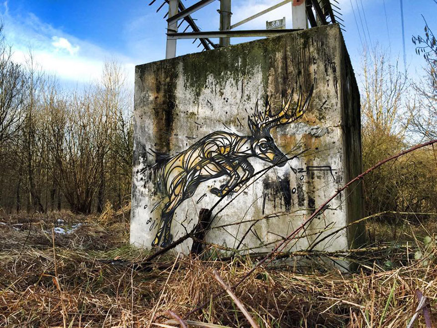 street-art-geometric-line-animals-dzia-belgium-15