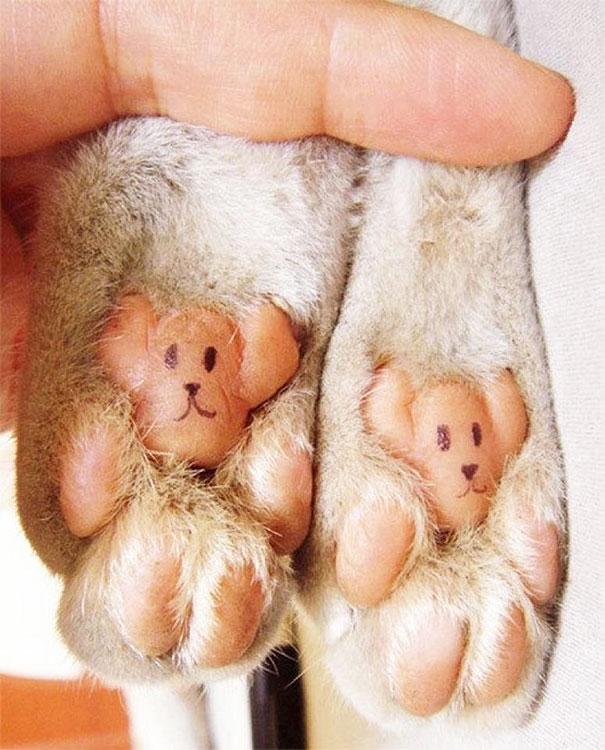 Teddy Bear Feet