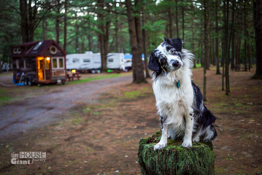 tiny-house-giant-journey-mobile-home-jenna-guillame-22