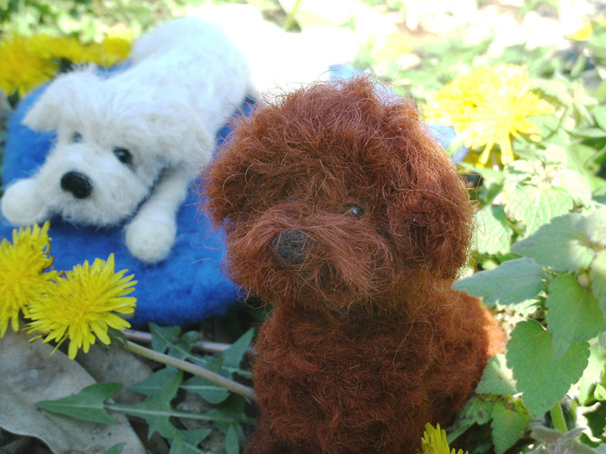 wool-dogs-custom-sculptures-jessie-dockins-14