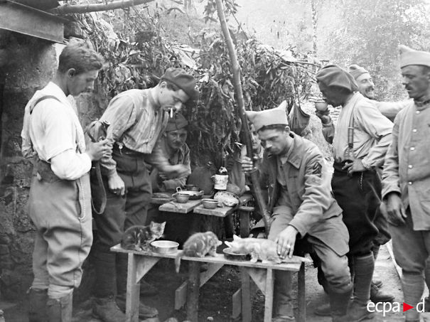 The Camp Moulin Rouge Soldiers Feeding Their Kittens. Beaurieux. 1914