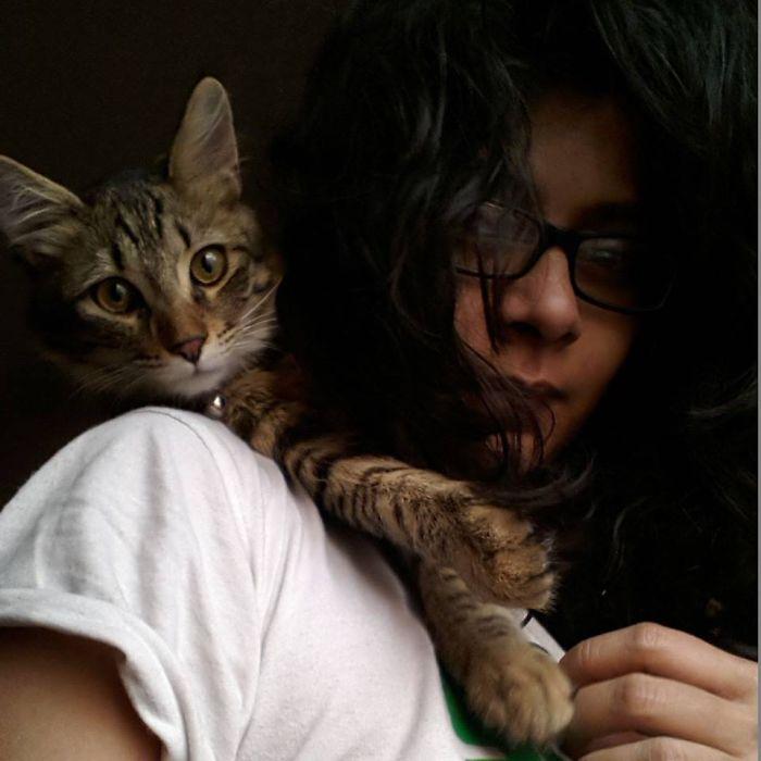 Tabby Love