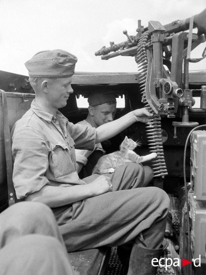 During The Battle Of Kursk, The Crew Sd.kfz.250. Panzer-grenadier-division Großdeutschland.1943