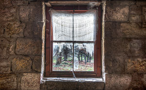 Windows Of Abandoned Rooms With Mystic Views