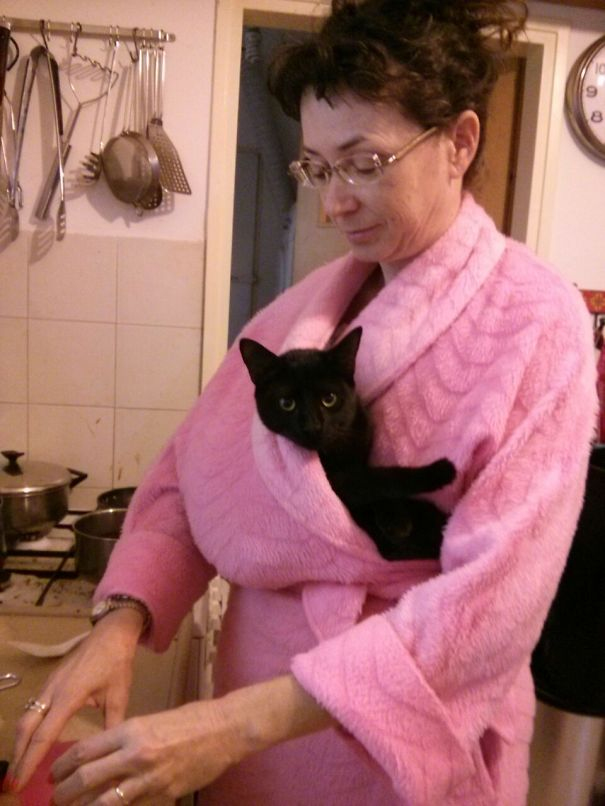 When The Cat Insists On Cuddling And I Have To Make Breakfast