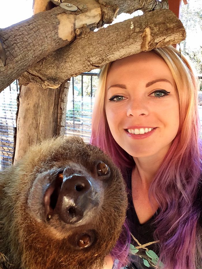Sloth Selfie = Slothfie? Slofie?
